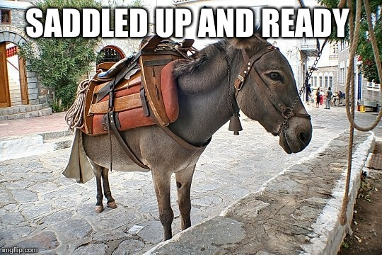 SADDLED UP AND READY | made w/ Imgflip meme maker