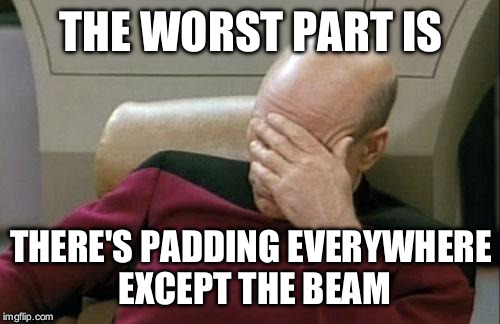 Captain Picard Facepalm Meme | THE WORST PART IS THERE'S PADDING EVERYWHERE EXCEPT THE BEAM | image tagged in memes,captain picard facepalm | made w/ Imgflip meme maker