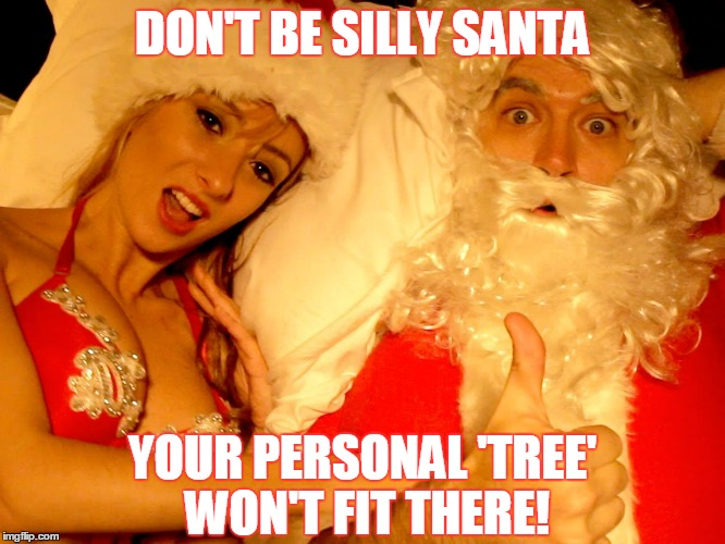 DON'T BE SILLY SANTA YOUR PERSONAL 'TREE' WON'T FIT THERE! | made w/ Imgflip meme maker