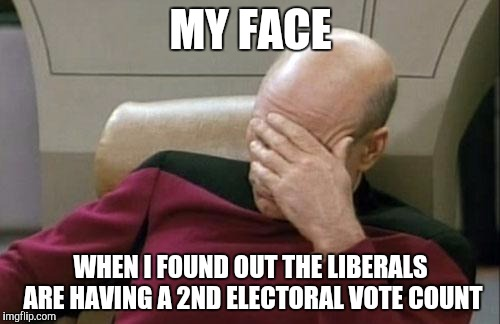 They just can't except defeat can they? |  MY FACE; WHEN I FOUND OUT THE LIBERALS ARE HAVING A 2ND ELECTORAL VOTE COUNT | image tagged in memes,captain picard facepalm,trump vs hillary | made w/ Imgflip meme maker