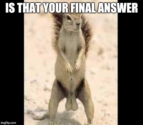 IS THAT YOUR FINAL ANSWER | made w/ Imgflip meme maker
