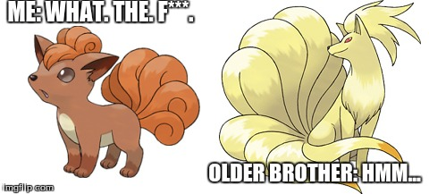 ME: WHAT. THE. F***. OLDER BROTHER: HMM... | made w/ Imgflip meme maker