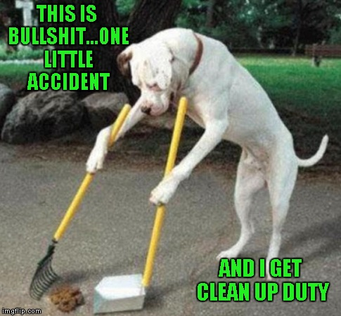 THIS IS BULLSHIT...ONE LITTLE ACCIDENT AND I GET CLEAN UP DUTY | made w/ Imgflip meme maker
