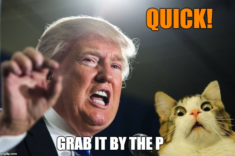 QUICK! GRAB IT BY THE P | made w/ Imgflip meme maker