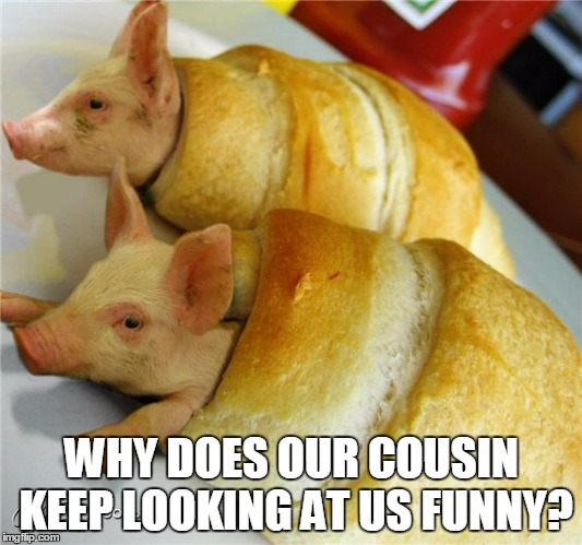 WHY DOES OUR COUSIN KEEP LOOKING AT US FUNNY? | made w/ Imgflip meme maker