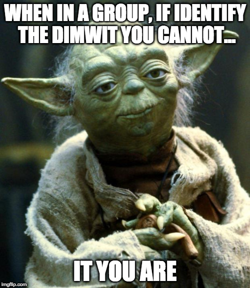 Star Wars Yoda Meme | WHEN IN A GROUP, IF IDENTIFY THE DIMWIT YOU CANNOT... IT YOU ARE | image tagged in memes,star wars yoda | made w/ Imgflip meme maker