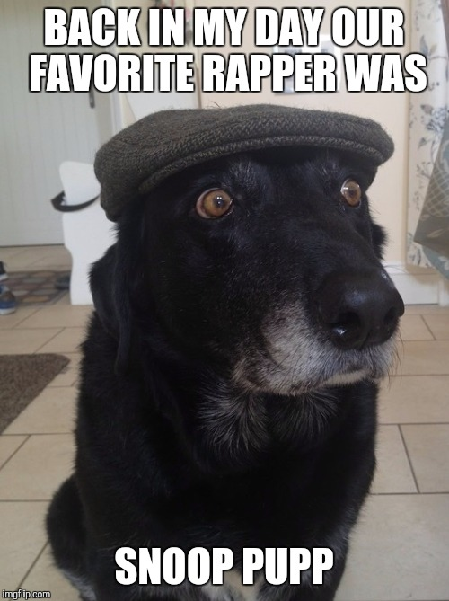 Back In My Day Dog | BACK IN MY DAY OUR FAVORITE RAPPER WAS SNOOP PUPP | image tagged in back in my day dog,memes | made w/ Imgflip meme maker