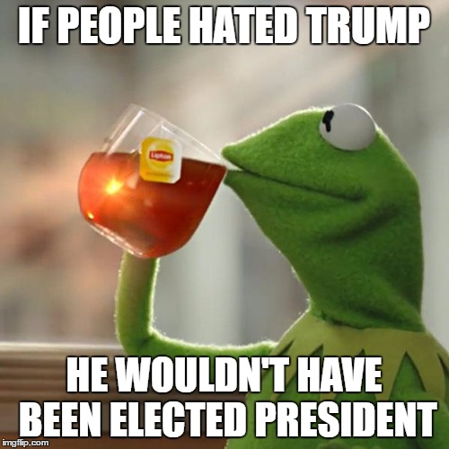 But Thats None Of My Business Meme | IF PEOPLE HATED TRUMP HE WOULDN'T HAVE BEEN ELECTED PRESIDENT | image tagged in memes,but thats none of my business,kermit the frog | made w/ Imgflip meme maker
