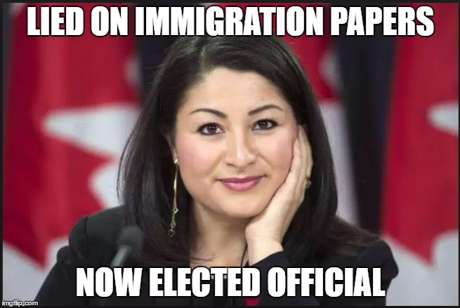 MARYAM | LIED ON IMMIGRATION PAPERS NOW ELECTED OFFICIAL | image tagged in illegal immigration | made w/ Imgflip meme maker