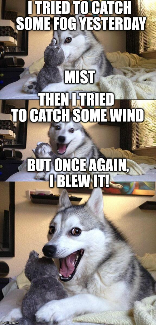 2 bad puns in 1! | I TRIED TO CATCH SOME FOG YESTERDAY MIST THEN I TRIED TO CATCH SOME WIND BUT ONCE AGAIN, I BLEW IT! | image tagged in memes,bad pun dog | made w/ Imgflip meme maker