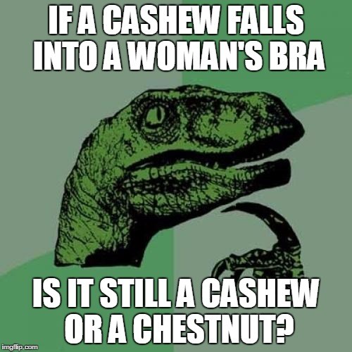 Philosoraptor Meme | IF A CASHEW FALLS INTO A WOMAN'S BRA IS IT STILL A CASHEW OR A CHESTNUT? | image tagged in memes,philosoraptor | made w/ Imgflip meme maker