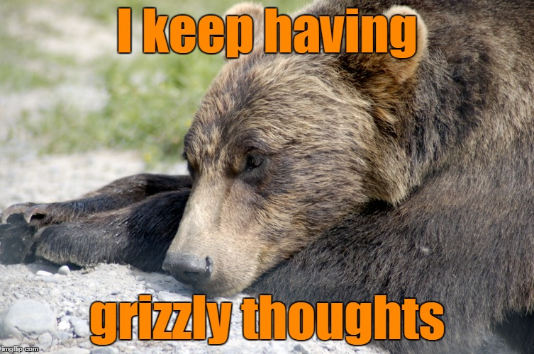 I keep having grizzly thoughts | made w/ Imgflip meme maker