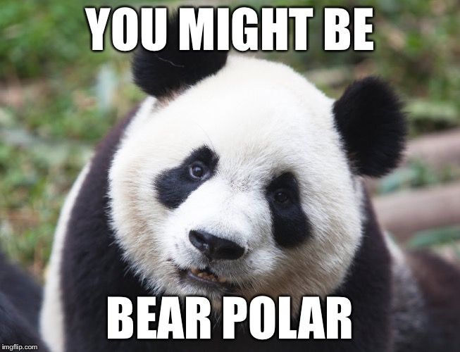 YOU MIGHT BE BEAR POLAR | made w/ Imgflip meme maker