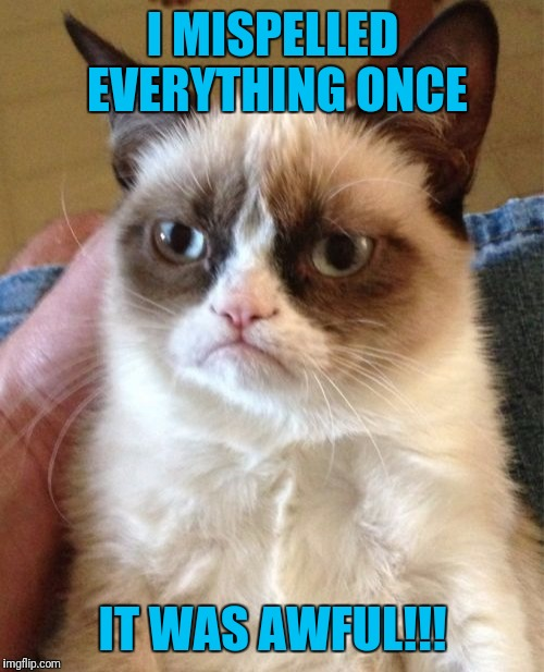 I MISPELLED EVERYTHING ONCE IT WAS AWFUL!!! | image tagged in memes,grumpy cat | made w/ Imgflip meme maker