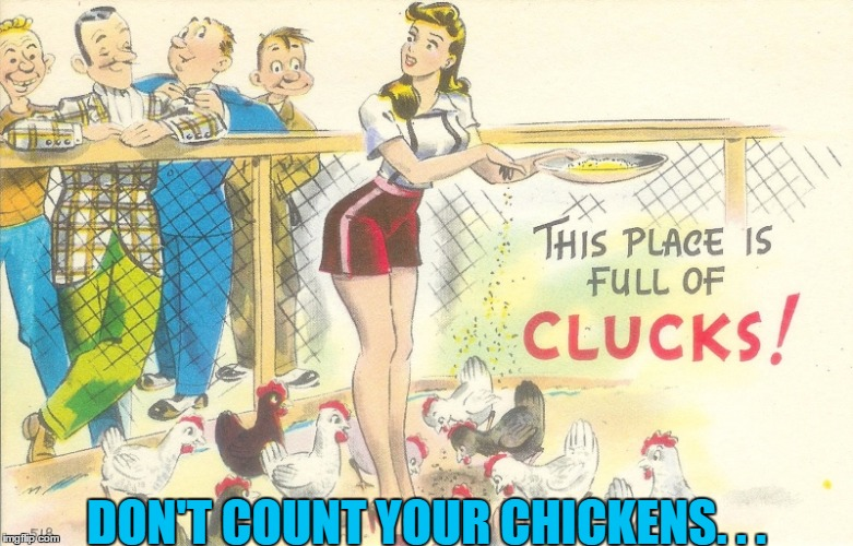 DON'T COUNT YOUR CHICKENS. . . | made w/ Imgflip meme maker