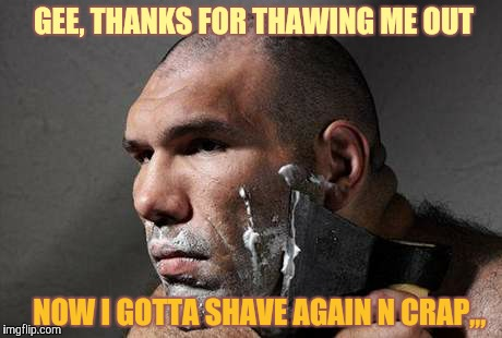 GEE, THANKS FOR THAWING ME OUT NOW I GOTTA SHAVE AGAIN N CRAP,,, | made w/ Imgflip meme maker