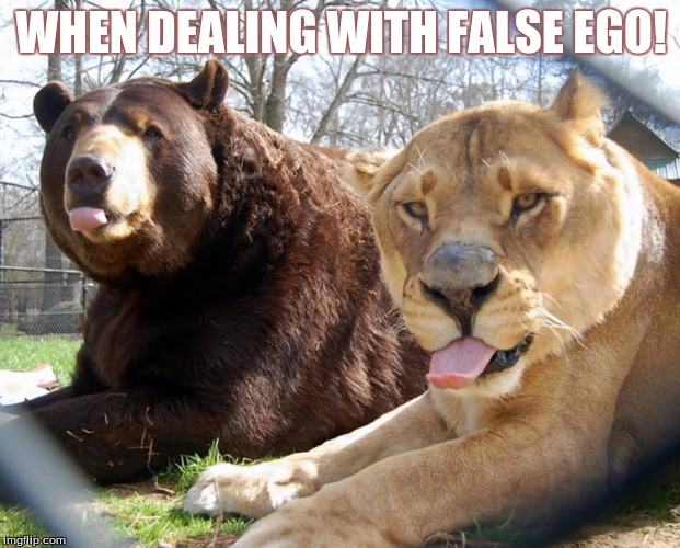 unlikely friends | WHEN DEALING WITH FALSE EGO! | image tagged in unlikely friends | made w/ Imgflip meme maker