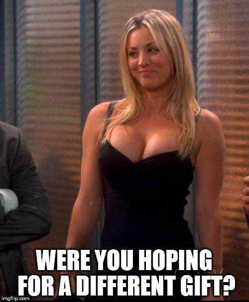 Penny - LBD | WERE YOU HOPING FOR A DIFFERENT GIFT? | image tagged in penny - lbd | made w/ Imgflip meme maker