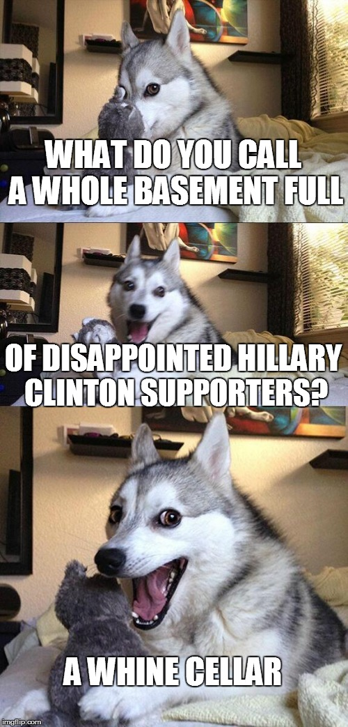 Bad Pun Dog Meme | WHAT DO YOU CALL A WHOLE BASEMENT FULL OF DISAPPOINTED HILLARY CLINTON SUPPORTERS? A WHINE CELLAR | image tagged in memes,bad pun dog | made w/ Imgflip meme maker