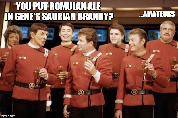 Happy new Year Star trek | YOU PUT ROMULAN ALE IN GENE'S SAURIAN BRANDY? ...AMATEURS | image tagged in happy new year star trek | made w/ Imgflip meme maker