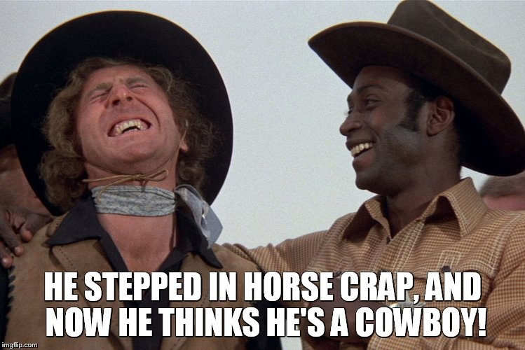 blazing saddles |  HE STEPPED IN HORSE CRAP, AND NOW HE THINKS HE'S A COWBOY! | image tagged in blazing saddles | made w/ Imgflip meme maker