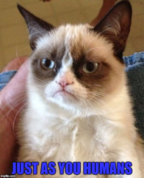 Grumpy Cat Meme | JUST AS YOU HUMANS | image tagged in memes,grumpy cat | made w/ Imgflip meme maker