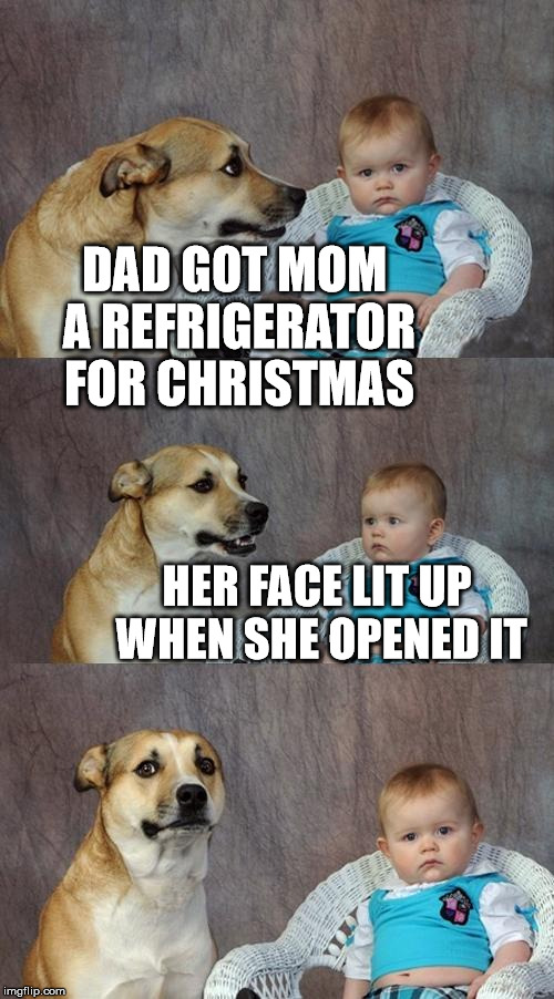 Dad Joke Dog Meme | DAD GOT MOM A REFRIGERATOR FOR CHRISTMAS HER FACE LIT UP WHEN SHE OPENED IT | image tagged in memes,dad joke dog | made w/ Imgflip meme maker