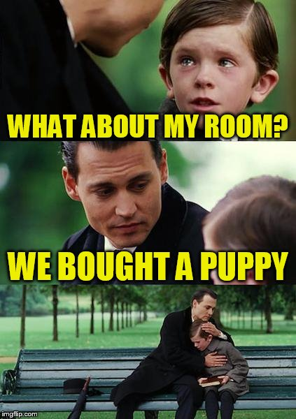 Finding Neverland Meme | WHAT ABOUT MY ROOM? WE BOUGHT A PUPPY | image tagged in memes,finding neverland | made w/ Imgflip meme maker
