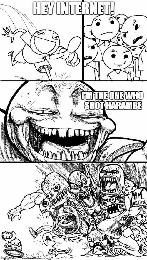 Hey Internet Meme | HEY INTERNET! I'M THE ONE WHO SHOT HARAMBE | image tagged in memes,hey internet | made w/ Imgflip meme maker