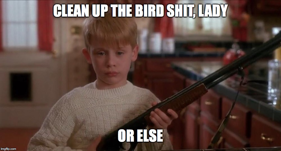 CLEAN UP THE BIRD SHIT, LADY OR ELSE | made w/ Imgflip meme maker