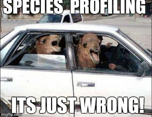 Quit Hatin | SPECIES  PROFILING ITS JUST WRONG! | image tagged in memes,quit hatin | made w/ Imgflip meme maker