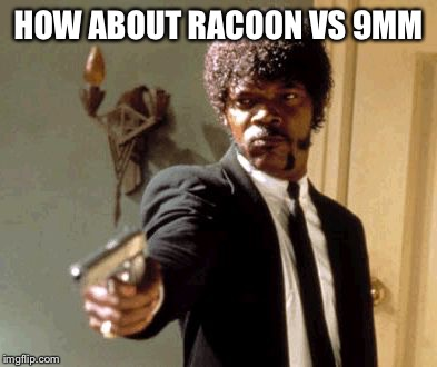 Say That Again I Dare You Meme | HOW ABOUT RACOON VS 9MM | image tagged in memes,say that again i dare you | made w/ Imgflip meme maker