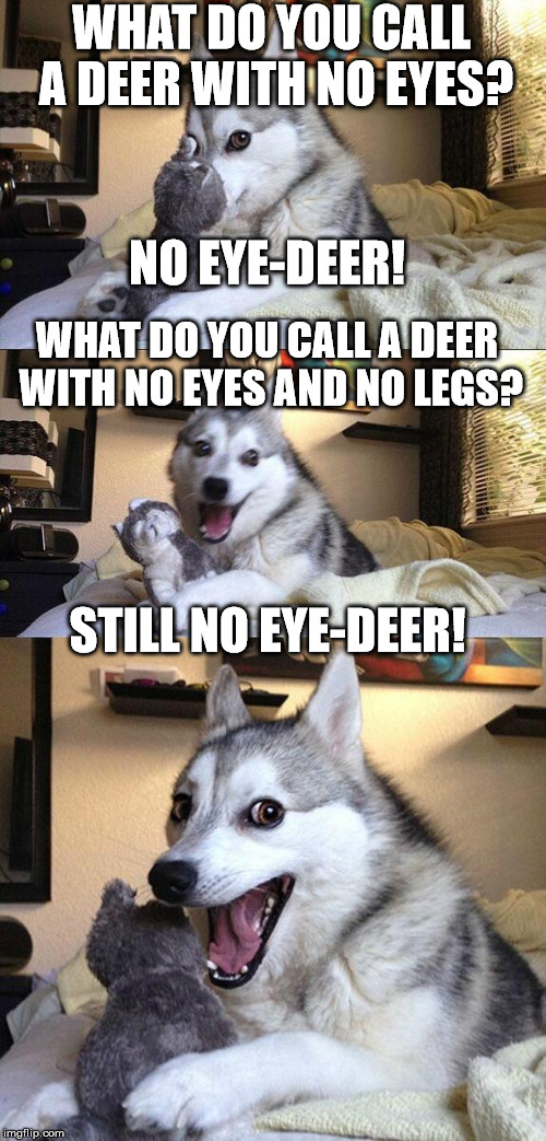 more 2 in 1 bad puns, because socrates said so! | WHAT DO YOU CALL A DEER WITH NO EYES? NO EYE-DEER! WHAT DO YOU CALL A DEER WITH NO EYES AND NO LEGS? STILL NO EYE-DEER! | image tagged in memes,bad pun dog | made w/ Imgflip meme maker