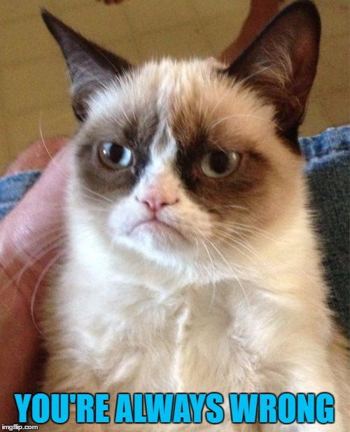 Grumpy Cat Meme | YOU'RE ALWAYS WRONG | image tagged in memes,grumpy cat | made w/ Imgflip meme maker