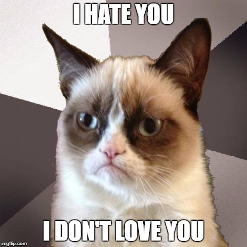 Sorry No Love From Grumpy Cat Imgflip