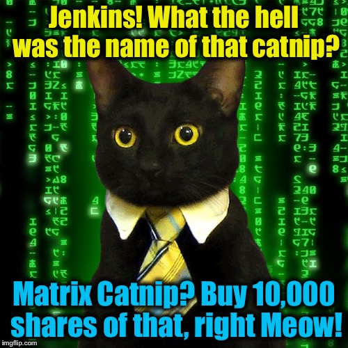 Business Cat knows a Purrrrfect deal when he hallucinates one!  | Jenkins! What the hell was the name of that catnip? Matrix Catnip? Buy 10,000 shares of that, right Meow! | image tagged in business cat matrix,evilmandoevil,memes,funny | made w/ Imgflip meme maker