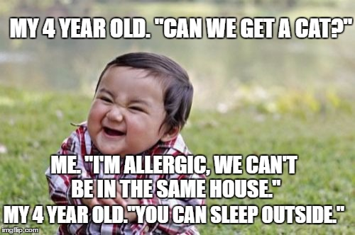 "Evil Toddler Meme | MY 4 YEAR OLD. ""CAN WE GET A CAT?"" ME. ""I'M ALLERGIC, WE CAN'T BE IN THE SAME HOUSE."" MY 4 YEAR OLD.""YOU CAN SLEEP OUTSIDE."" 