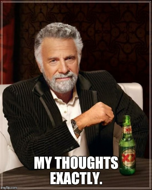 The Most Interesting Man In The World Meme | MY THOUGHTS EXACTLY. | image tagged in memes,the most interesting man in the world | made w/ Imgflip meme maker