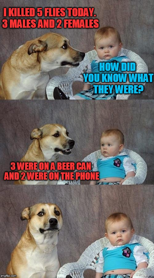 Dad Joke Dog Meme | I KILLED 5 FLIES TODAY. 3 MALES AND 2 FEMALES 3 WERE ON A BEER CAN AND 2 WERE ON THE PHONE HOW DID YOU KNOW WHAT THEY WERE? | image tagged in memes,dad joke dog | made w/ Imgflip meme maker