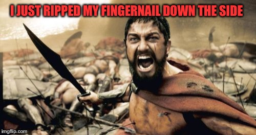 Sparta Leonidas Meme | I JUST RIPPED MY FINGERNAIL DOWN THE SIDE | image tagged in memes,sparta leonidas | made w/ Imgflip meme maker