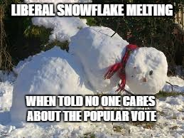 Liberal Snowflake Melting | LIBERAL SNOWFLAKE MELTING WHEN TOLD NO ONE CARES ABOUT THE POPULAR VOTE | image tagged in liberal logic,alt-left,popular vote | made w/ Imgflip meme maker