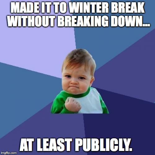 Success Kid Meme | MADE IT TO WINTER BREAK WITHOUT BREAKING DOWN... AT LEAST PUBLICLY. | image tagged in memes,success kid | made w/ Imgflip meme maker
