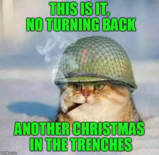 Another Christmas In The Trenches | THIS IS IT, NO TURNING BACK ANOTHER CHRISTMAS IN THE TRENCHES | image tagged in war cat,home alone,you was smooching with everybody,cliff,cats,animals | made w/ Imgflip meme maker
