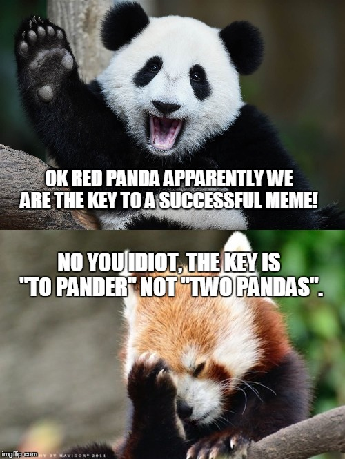 "So close | OK RED PANDA APPARENTLY WE ARE THE KEY TO A SUCCESSFUL MEME! NO YOU IDIOT, THE KEY IS ""TO PANDER"" NOT ""TWO PANDAS"". 