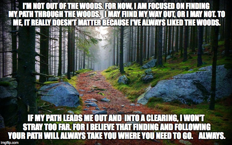 Forest Path | I'M NOT OUT OF THE WOODS. FOR NOW, I AM FOCUSED ON FINDING MY PATH THROUGH THE WOODS.   I MAY FIIND MY WAY OUT, OR I MAY NOT. TO ME, IT REAL | image tagged in forest path | made w/ Imgflip meme maker