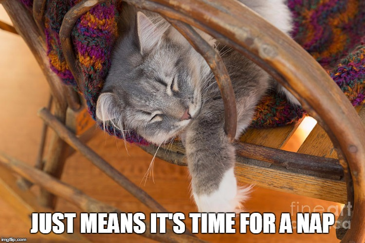 JUST MEANS IT'S TIME FOR A NAP | made w/ Imgflip meme maker