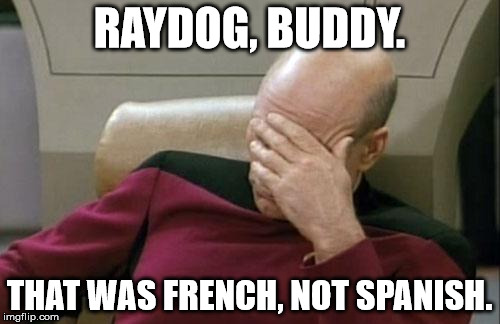 Captain Picard Facepalm Meme | RAYDOG, BUDDY. THAT WAS FRENCH, NOT SPANISH. | image tagged in memes,captain picard facepalm | made w/ Imgflip meme maker