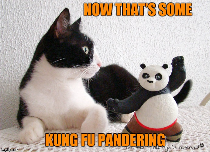 NOW THAT'S SOME KUNG FU PANDERING | image tagged in kungfu pandering | made w/ Imgflip meme maker