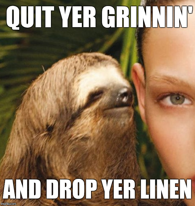Straight to the point sloth | QUIT YER GRINNIN' AND DROP YER LINEN | image tagged in rape sloth | made w/ Imgflip meme maker