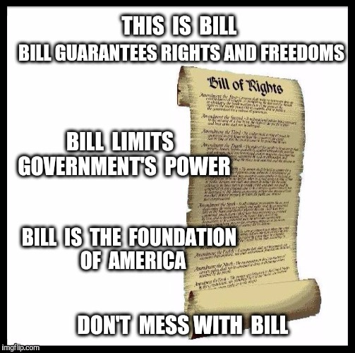 THIS  IS  BILL DON'T  MESS WITH  BILL BILL GUARANTEES RIGHTS AND FREEDOMS BILL  LIMITS  GOVERNMENT'S  POWER BILL  IS  THE  FOUNDATION  OF  A | image tagged in bill of rights,freedom,constitution,the constitution,america,foundation | made w/ Imgflip meme maker